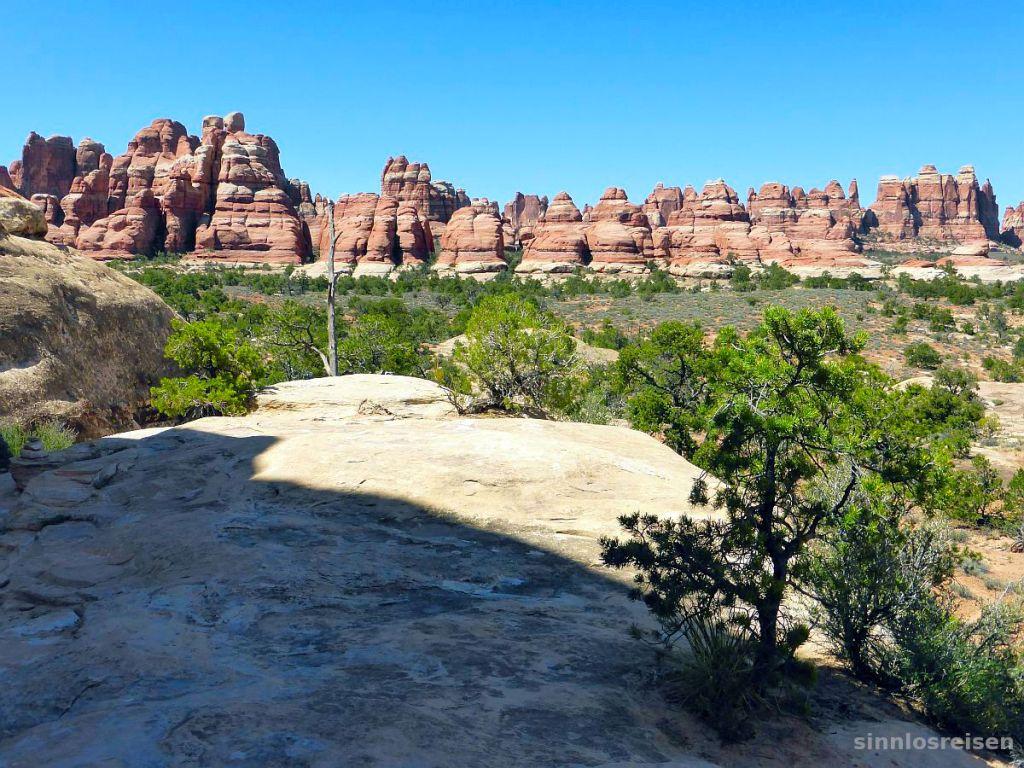 needles in canyonlands