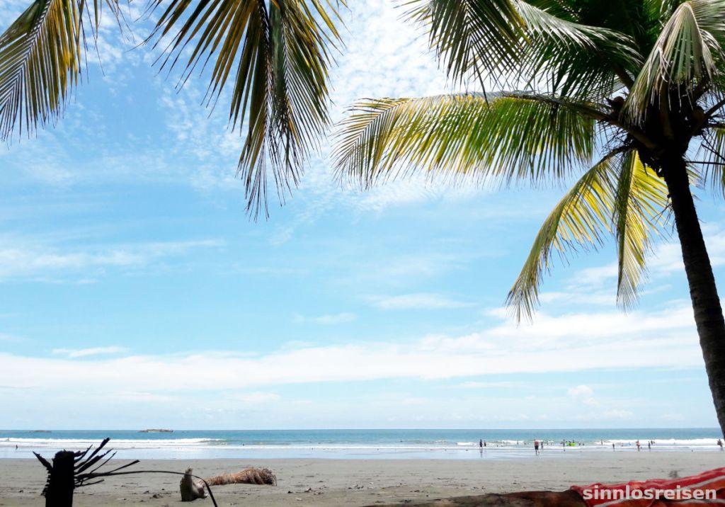 Beach Strand mit Palmen