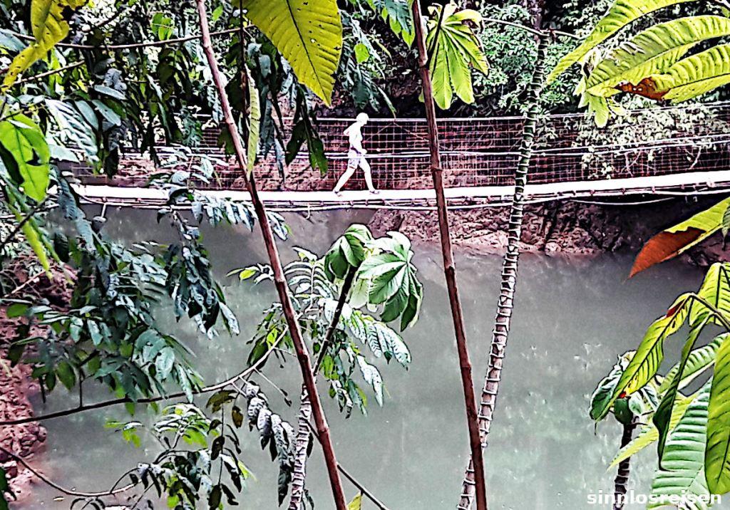 Hängebrücke am Drake Hiking Trail