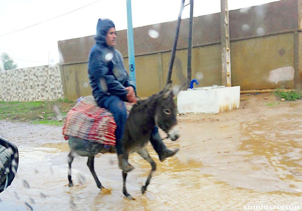 Mann reitet auf Esel im Regen