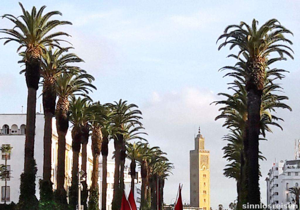 Minarett mit Palmen in Rabat